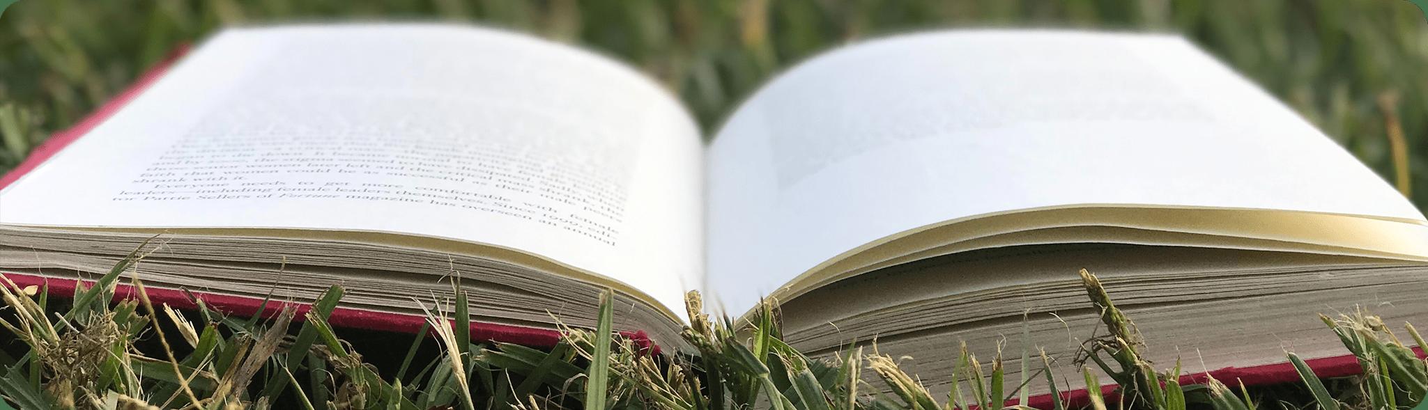 Sommerens romaner